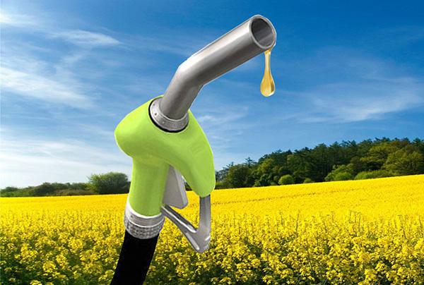 oil-b-srl-biocarburanti-da-materie-prime-avanzate-4
